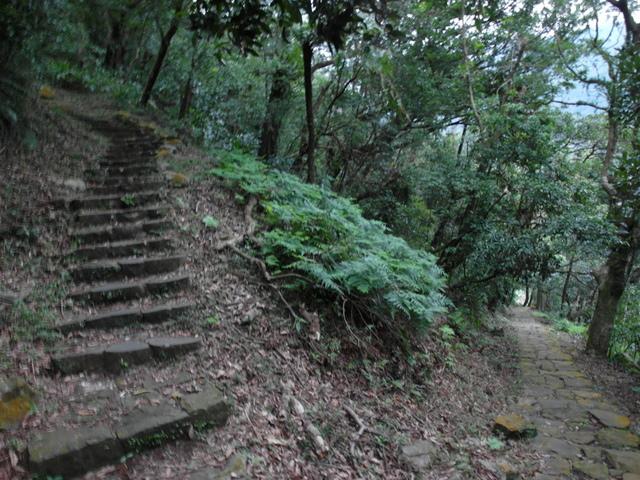 紗帽山 (68).JPG