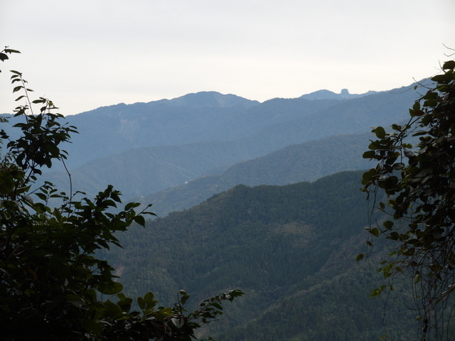 鳥嘴山、大窩山 (152).JPG