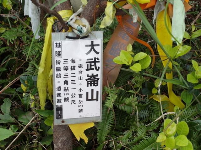 大武崙山 (25).jpg