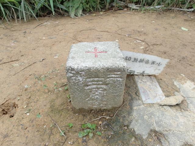 大武崙山 (28).jpg