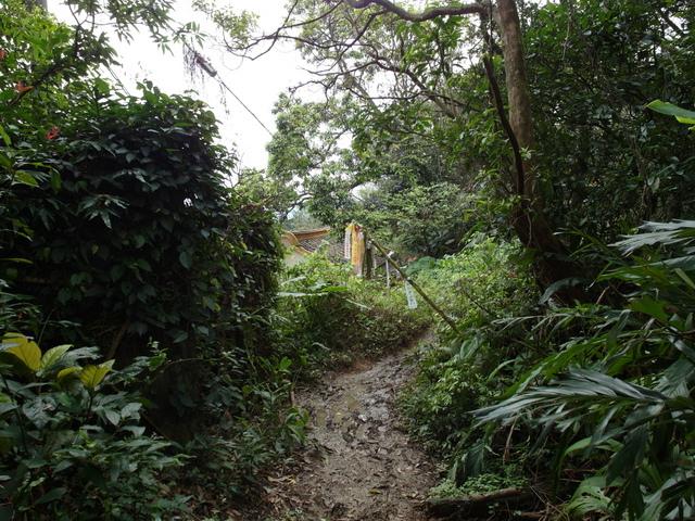 大武崙山 (37).jpg