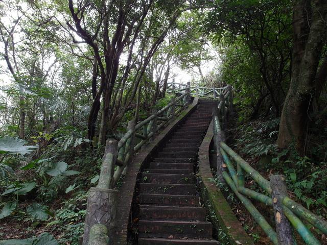 大武崙山 (70).jpg