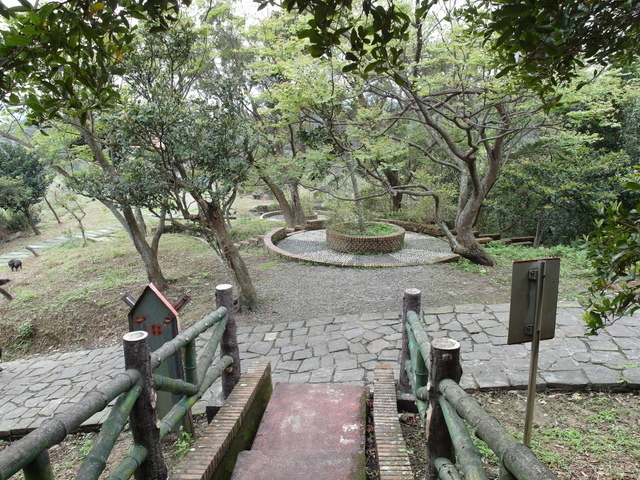 大武崙山 (71).jpg