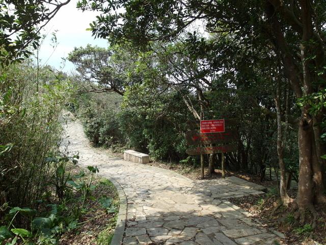 情人湖 (6).jpg