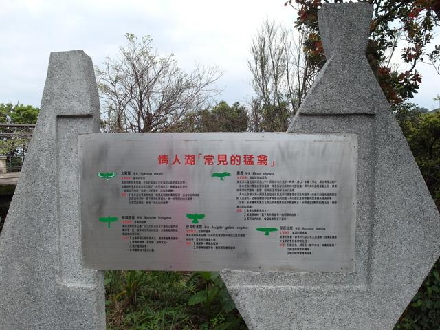 情人湖 (24).jpg
