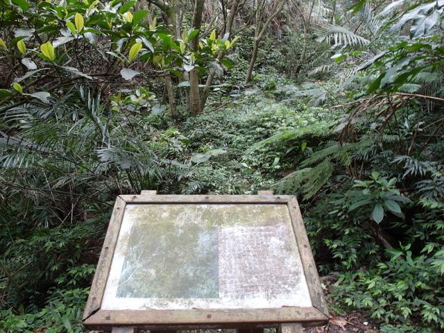 情人湖 (93).jpg