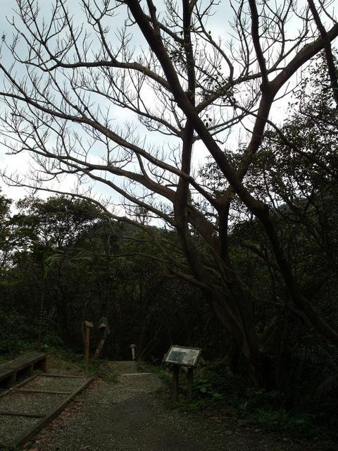 情人湖 (99).jpg