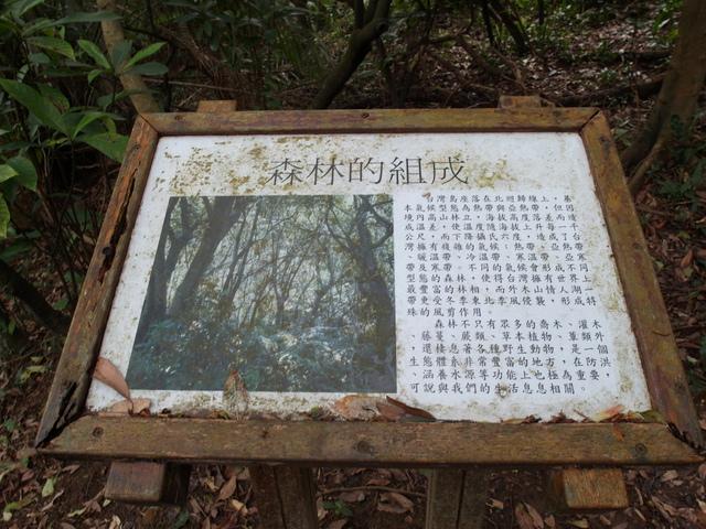 情人湖 (105).jpg