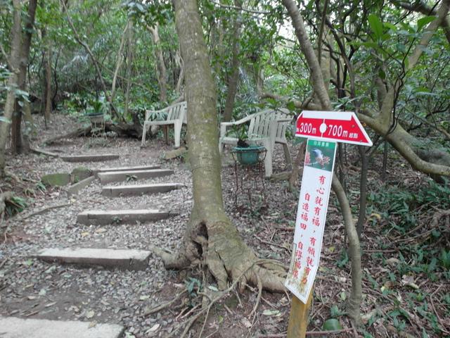 情人湖 (113).jpg