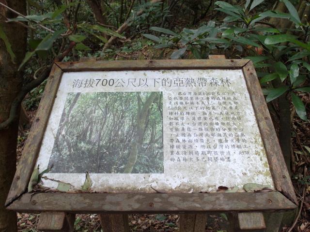 情人湖 (114).jpg