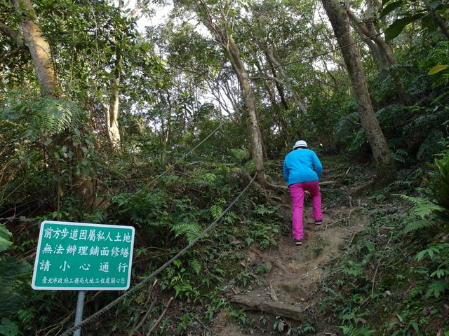 康樂山 (10).JPG