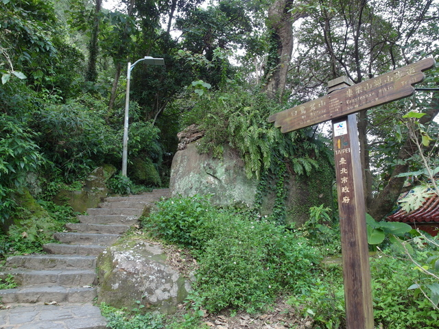 白鷺鷥山 (108).JPG