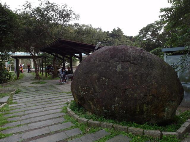 白鷺鷥山 (109).JPG
