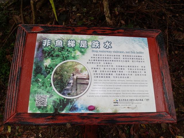 橫嶺古道 (4).JPG