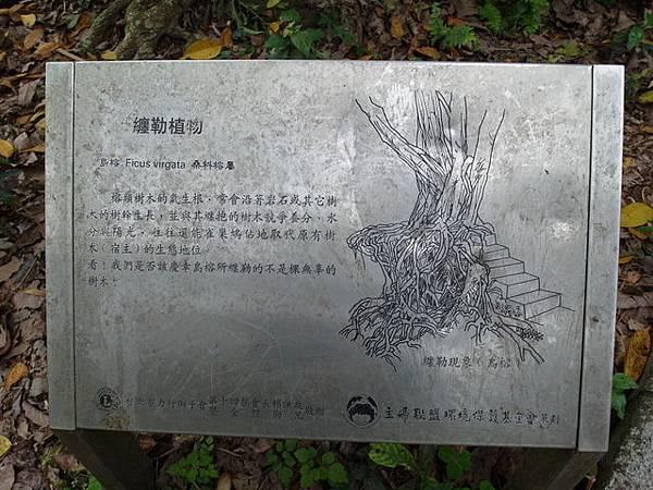 仙跡岩 (40).JPG
