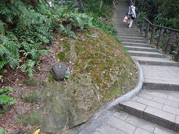 仙跡岩 (50).JPG