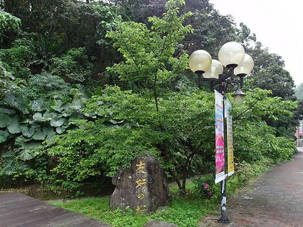 仙跡岩 (122).JPG