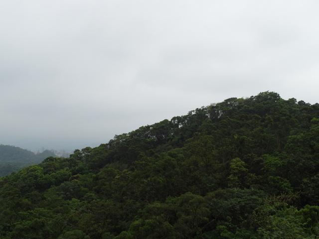 牛稠湖山 (25).jpg