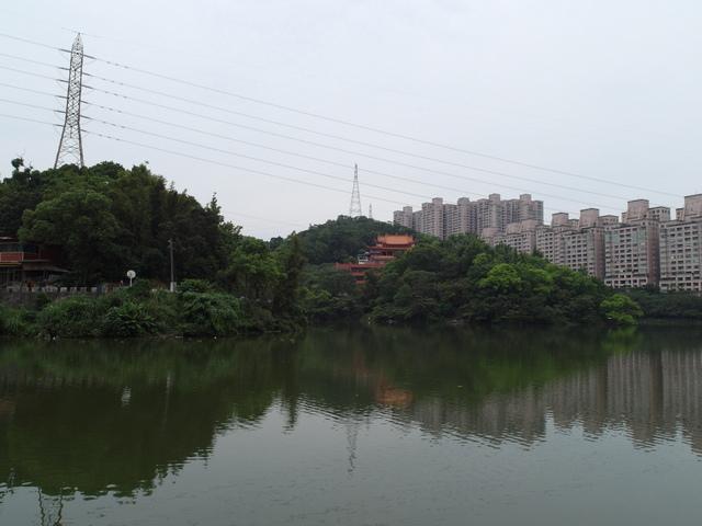 老鷲山 (5).JPG