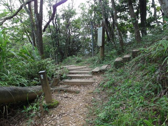 老鷲山 (100).JPG