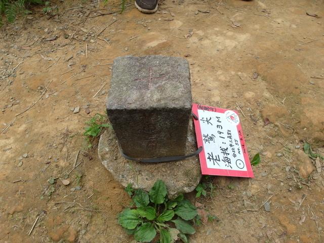 老鷲山 (111).JPG