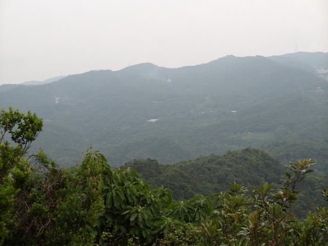 老鷲山 (114).JPG