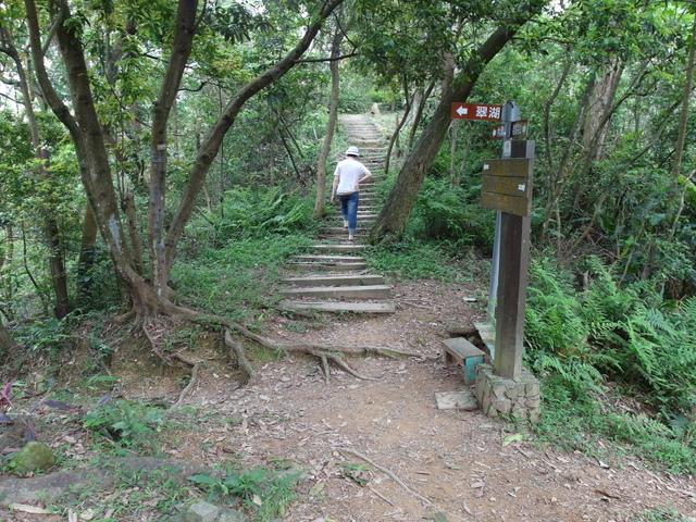 老鷲山 (123).JPG