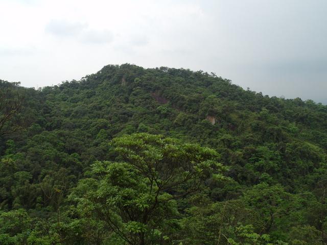 老鷲山 (128).JPG