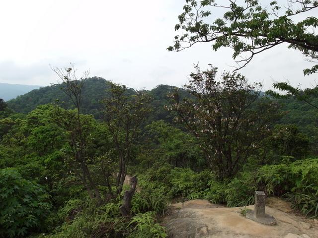 老鷲山 (133).JPG
