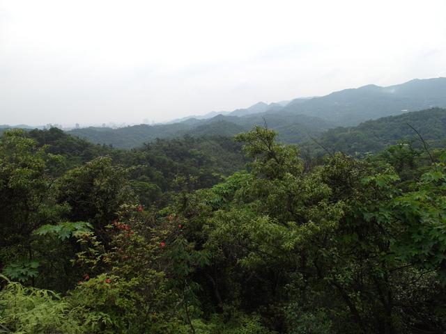 老鷲山 (135).JPG