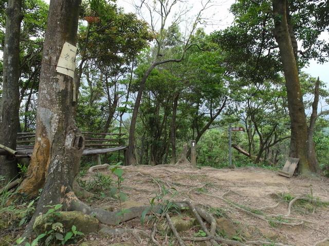 老鷲山 (138).JPG