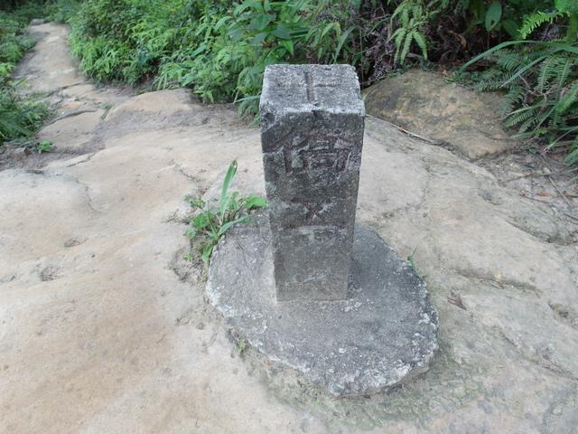 老鷲山 (134).JPG