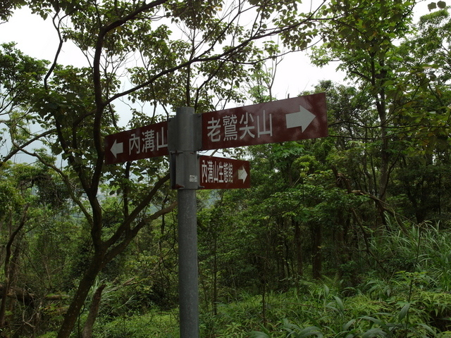老鷲山 (141).JPG