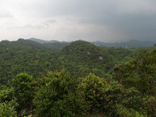 老鷲山 (157).JPG