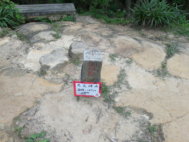 老鷲山 (154).JPG