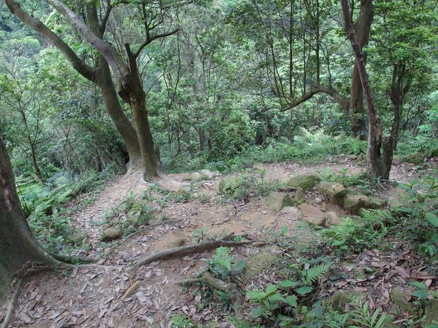 老鷲山 (168).JPG