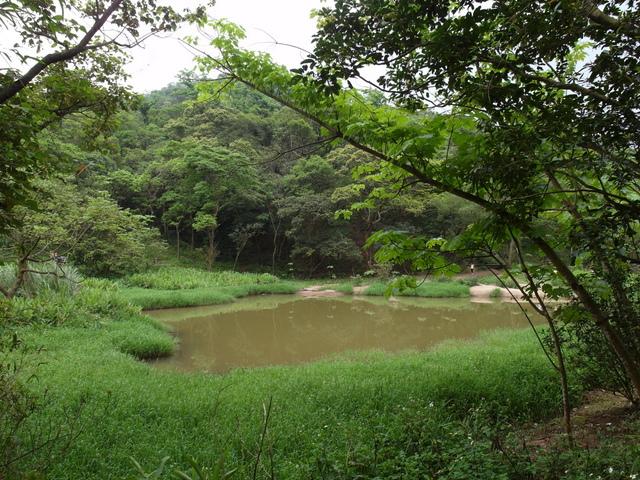 老鷲山 (172).JPG