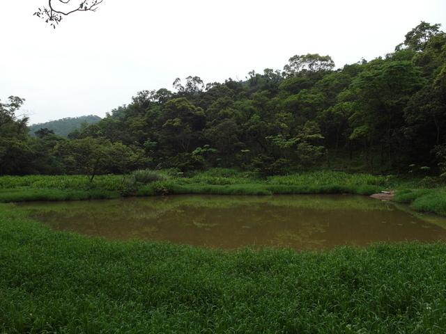 老鷲山 (174).JPG