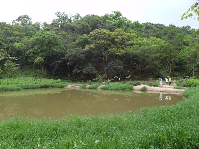 老鷲山 (173).JPG