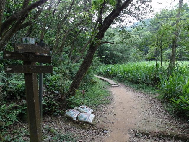 老鷲山 (171).JPG