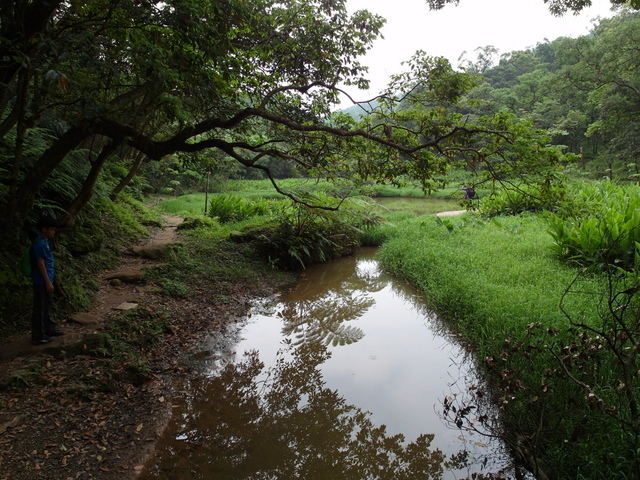 老鷲山 (177).JPG
