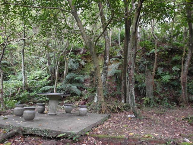 老鷲山 (189).JPG