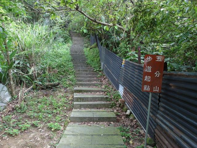 五分山 (38).jpg