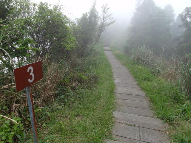 五分山 (69).jpg