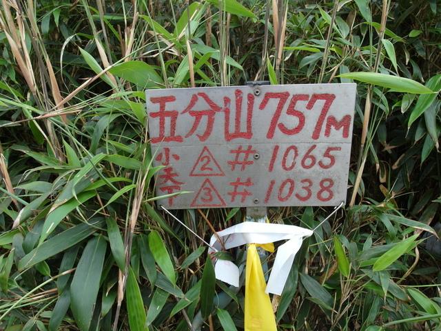 五分山 (148).jpg