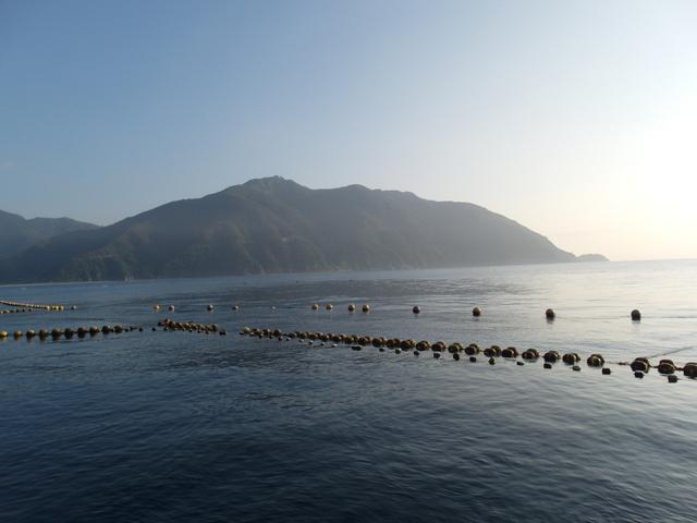 粉鳥林漁港  (55).JPG