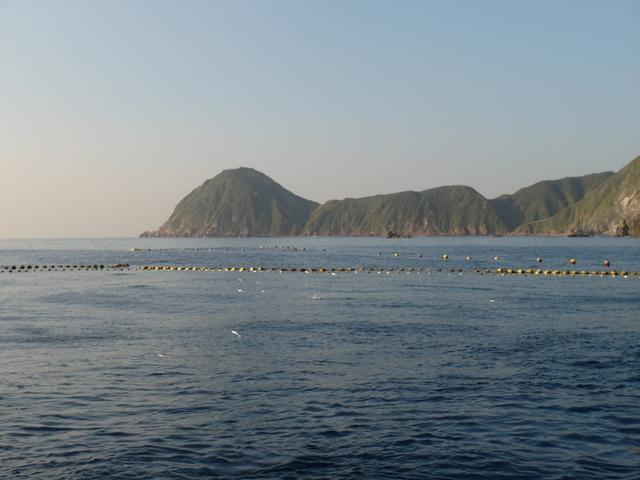 粉鳥林漁港  (60).JPG