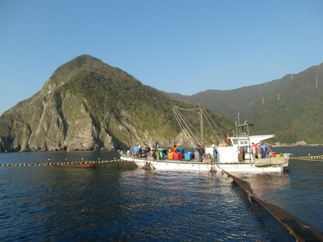 粉鳥林漁港  (61).JPG