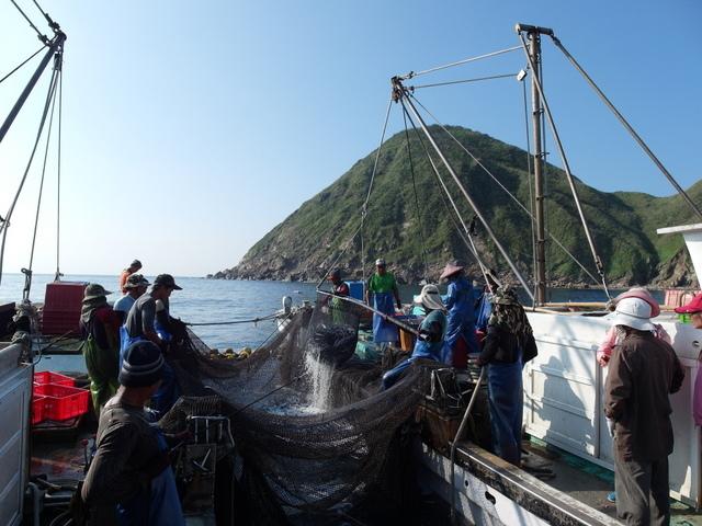 粉鳥林漁港  (118).JPG