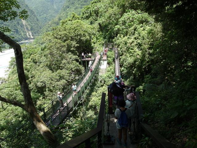 小錐麓步道 (31).JPG
